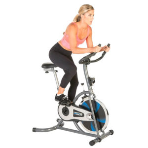 ProGear 100S Exercise Bike